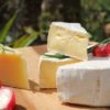 Dairy Products Are Not Harmful to Health Study Shows
