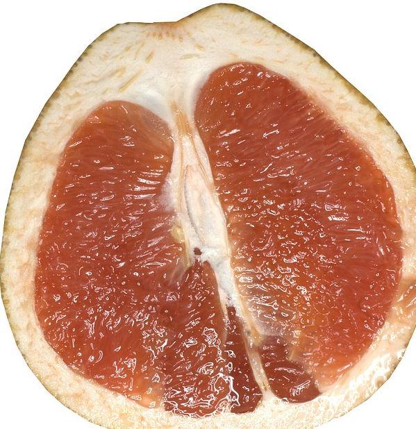 Look Like Vulva